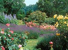 garnier jardins